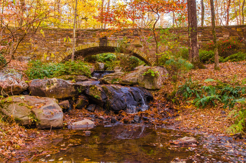 Garvan Woodland Gardens is a great place to visit in Arkansas for fall foliage.
