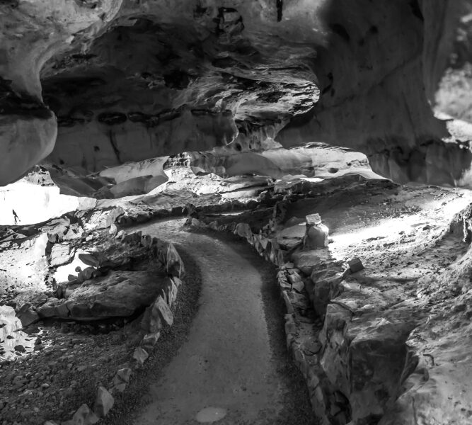 A pathway in the Forbbiden Caverns, Tennessee, winding through rock walls.
