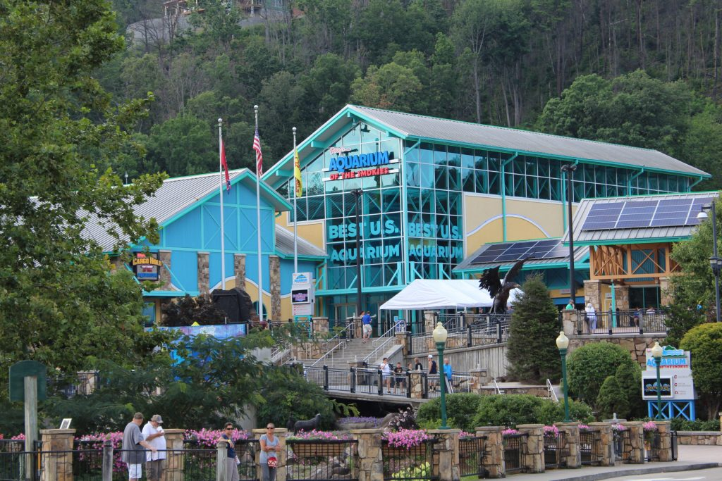 Photo showing the outside of Ripley's Aquarium in the Smokies located in Gatlinburg. One of the family-friendly things to do in Gatlinburg.