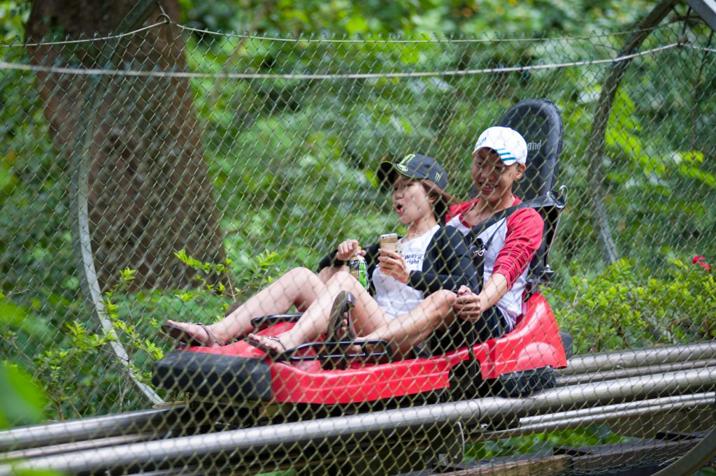 Photo of two people riding a mountain coaster with a hand brake. One of the more thrilling things to do in Gatlinburg.