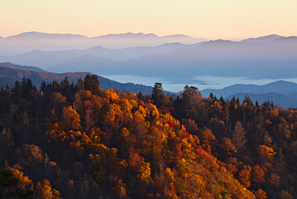rolling hills covered in autumn leaves weekend getaways in Tennessee