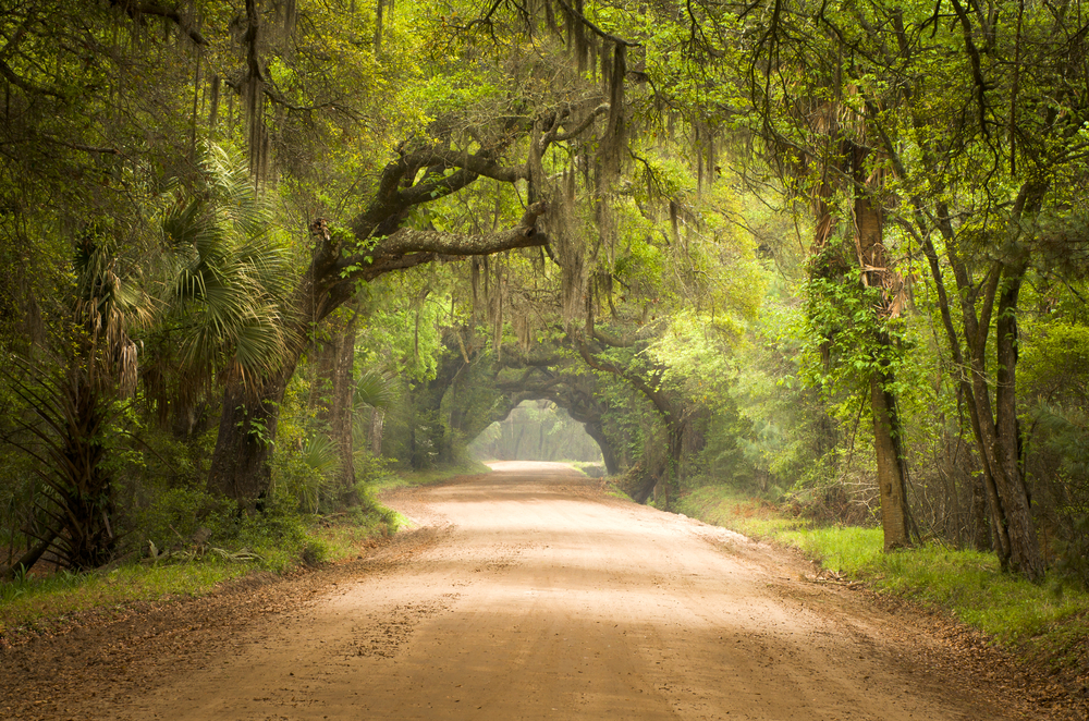 Botany Bay Plantation is one of the best south Carolina road trips