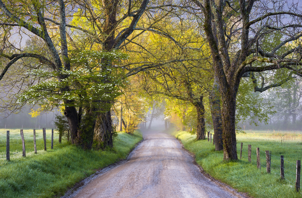 best road trips in Tennessee