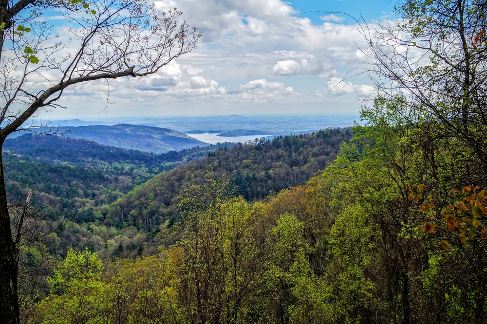 The view of the Nantahala National Forest from one of the many overlooks on the Oscar Wingington Scenic Byway