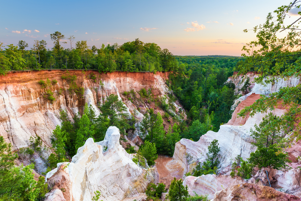 Providence Canyon in Georgia, a canyon made of red clay and loam that resembles the Grand Canyon