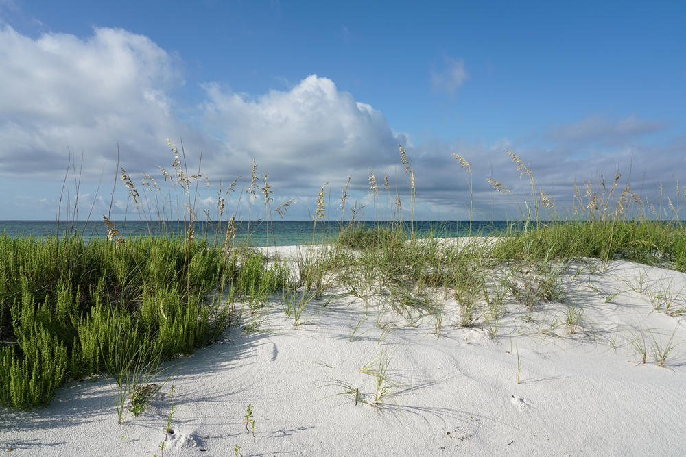Gulf Islands National Seashore is a southern national park that runs through florida and mississippi