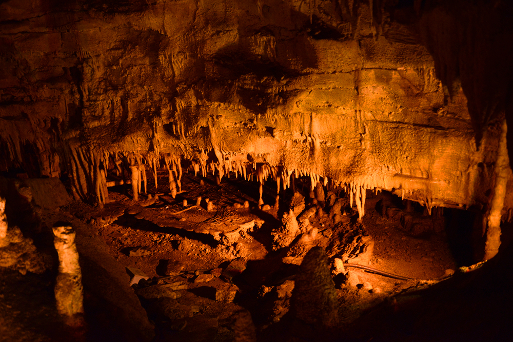 Mammoth Cave National Park, Kentucky is such an interesting place to visit, you can take guided tours