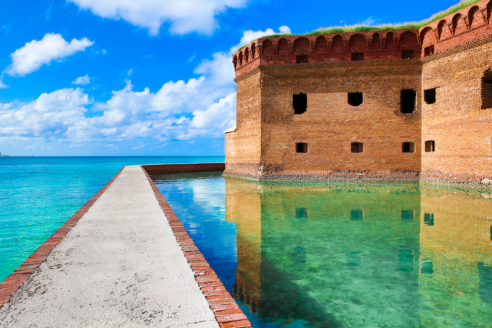 The Dry Tortugas has some gorgeous marine life
