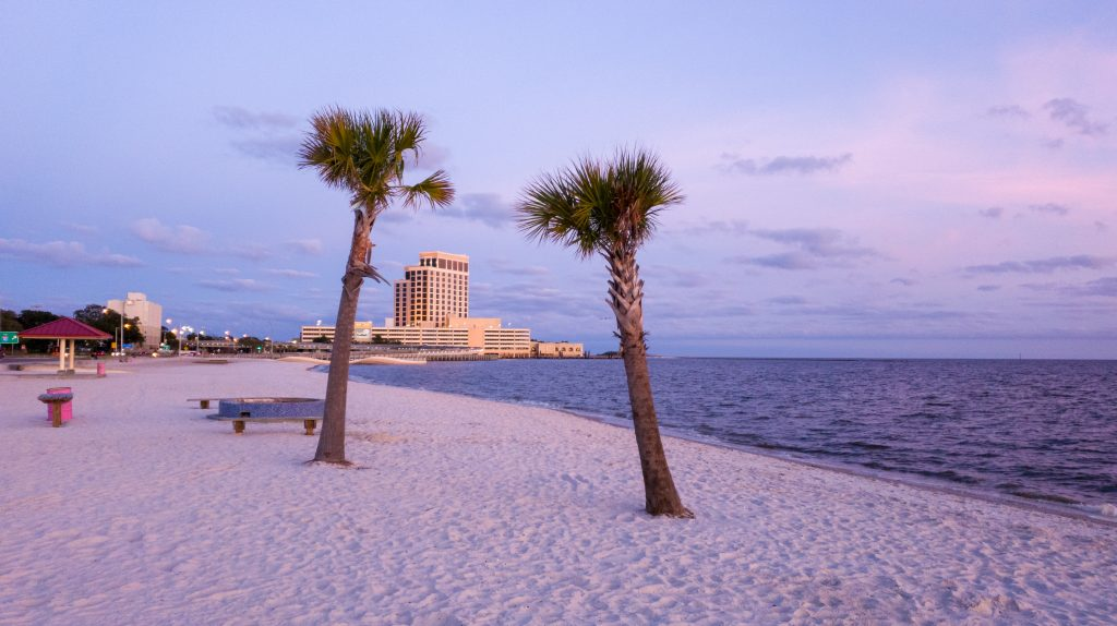 Two palm trees sway in the wind in Biloxi Beach, a perfect trip on a Southern road trips.