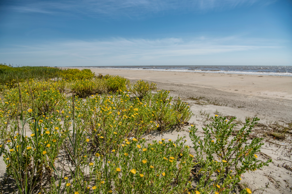 Check out some beaches on a weekend getaway in Louisiana.