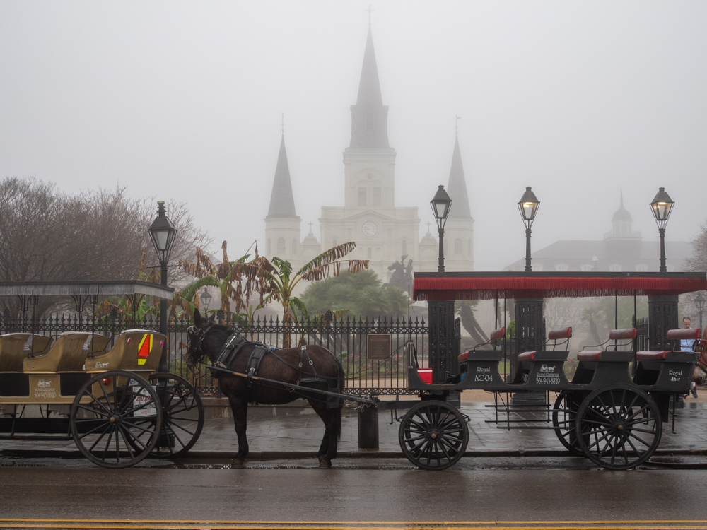 creepy carriage on a new orleans ghost tour in the mist