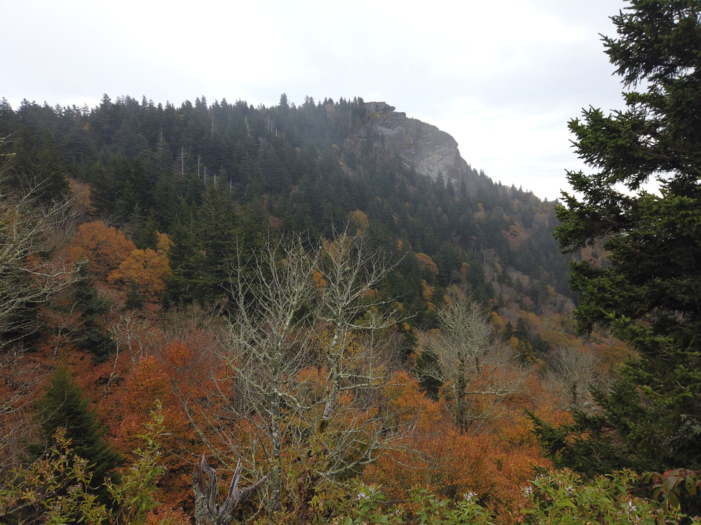 A photo of Devils Courthouse on Devils Courthouse Trail. One of the most scenic Blue Ridge Parkway hikes.