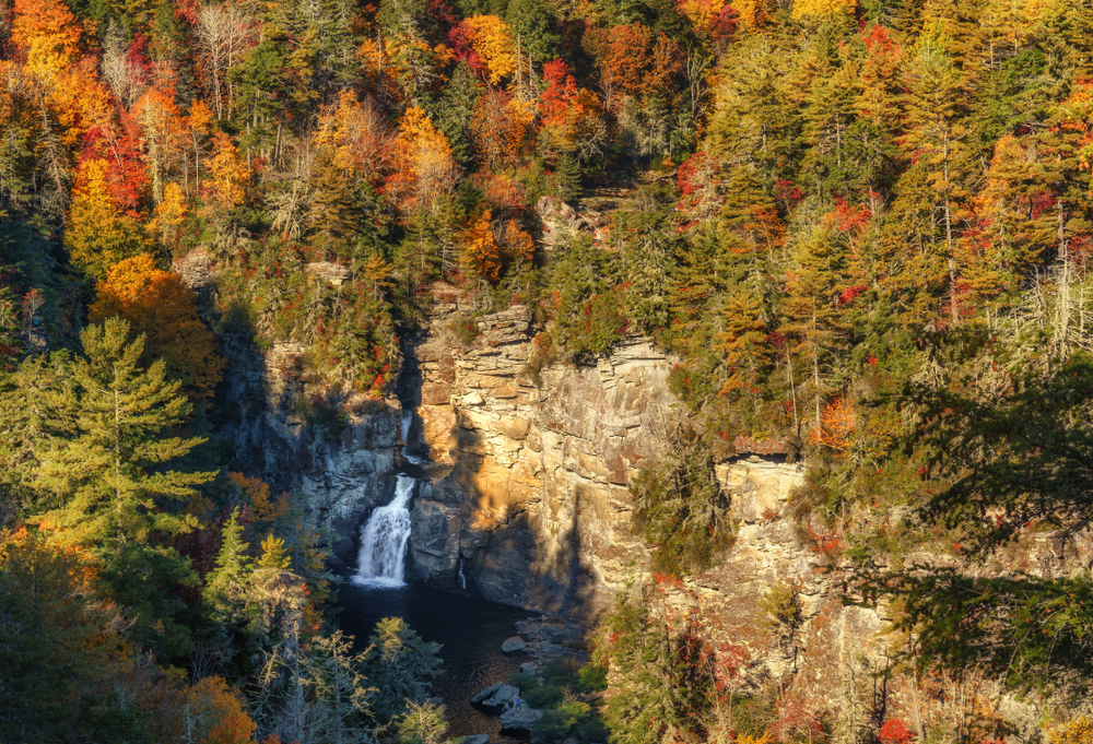 A photo of autumn trees surrounding a waterfall on Erwins View Trail, one of the most magical Blue Ridge Parkway hikes.