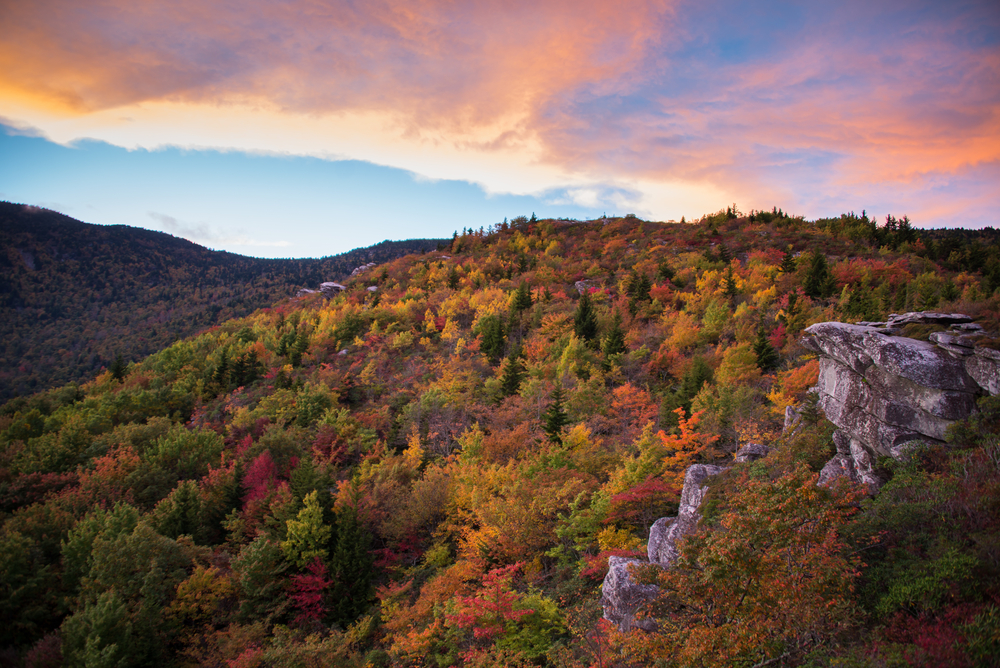 Photo of Blue Ridge Mountain at sunset that showcases a pink cloudy sky that reflects the oranges, reds, and yellows of the forest beneath it.