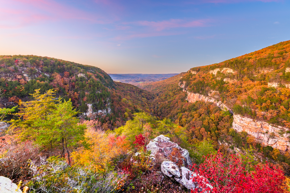 Photo of Cloudland Canyon where the Georgia fall foliage is beginning to shift colors from greens to oranges and reds.