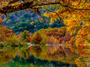 fall foliage in texas with a reflection of colors on the lake