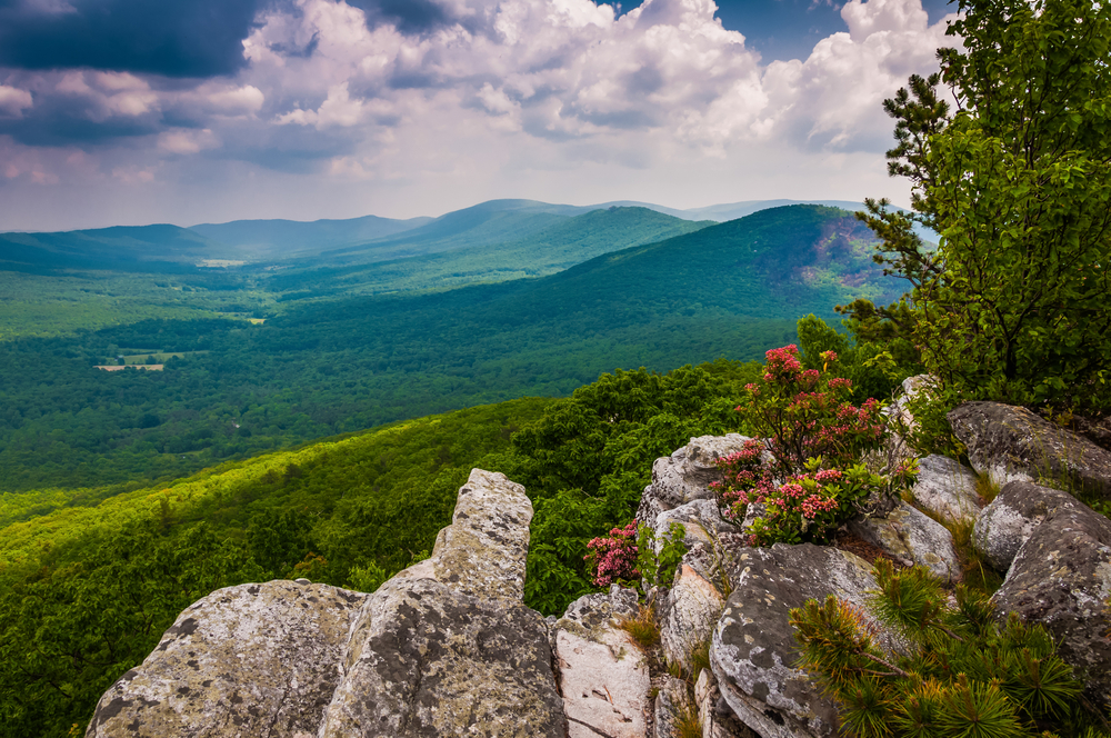 George Washington National Forest is a great place to hike and camp in Virginia.