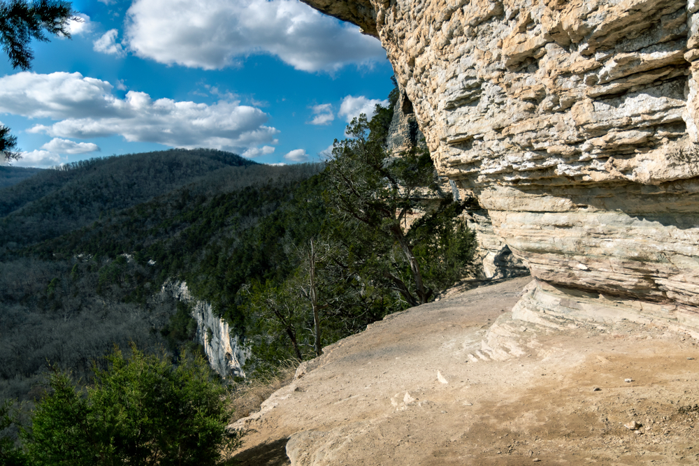 A photo of the forest on a Big Bluff located on Goat Trail in Arkansas, one of the most scenic hikes in Arkansas.