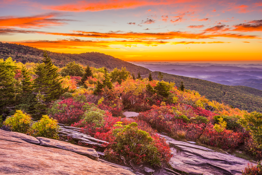 A photo of sunset over the rolling mountains and autumn colored forest seen from Grandfather Mountain.