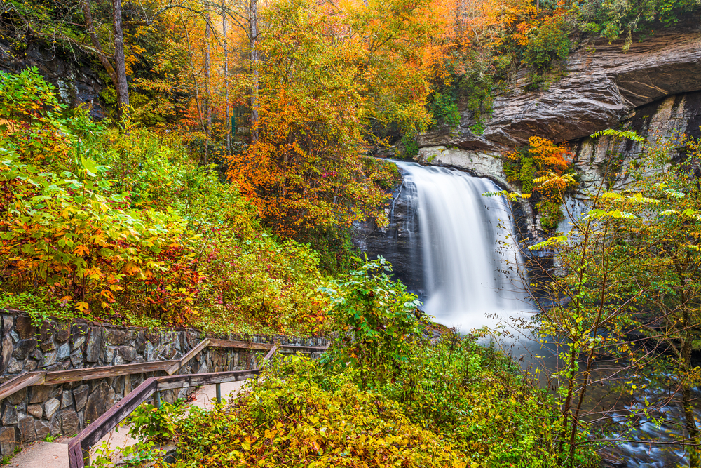 A picture of Looking Glass Falls and autumn leafed trees in the Pisgah National Forest.