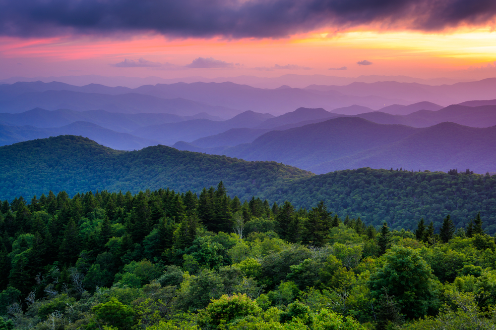 Virginia is for lovers...of nature!