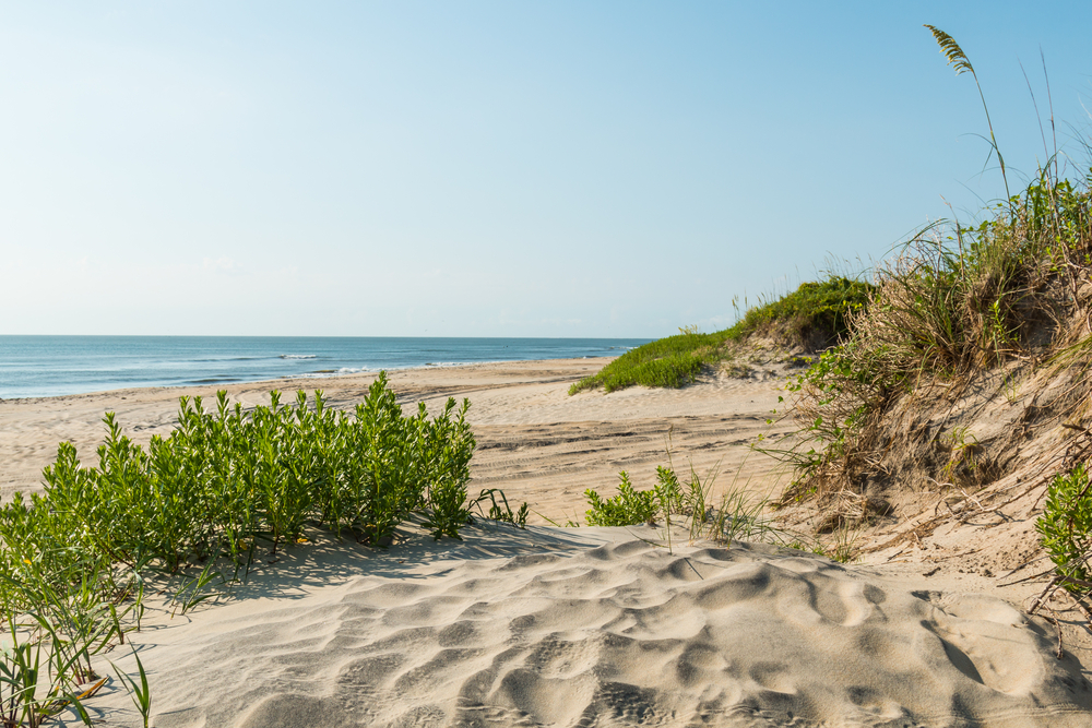 Photo of seashore on Cape Hatteras, one of the best things to do in the Outer Banks.