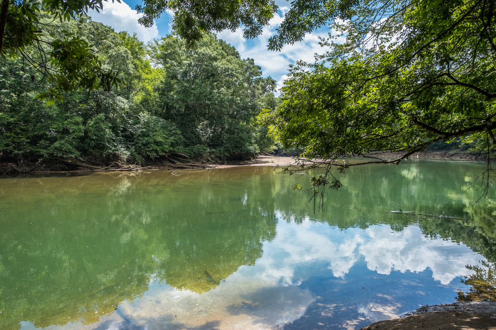 Photo of a sunny day on the Chattahoochee River, one of the best national parks near Atlanta.