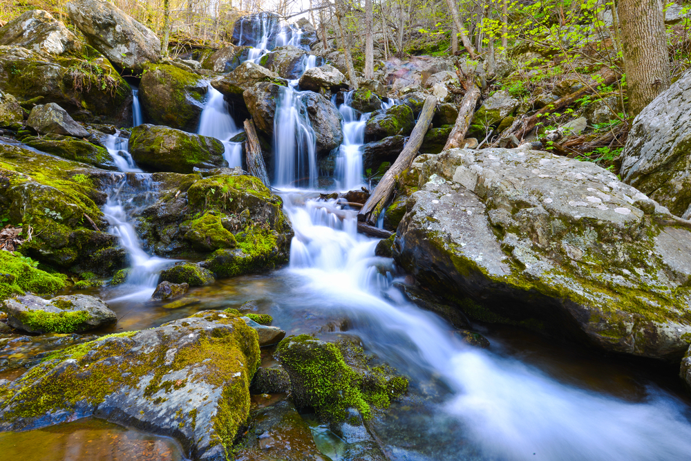 The Dark Hollow Falls in Shenandoah National Park, one of the best places to visit in Virginia!