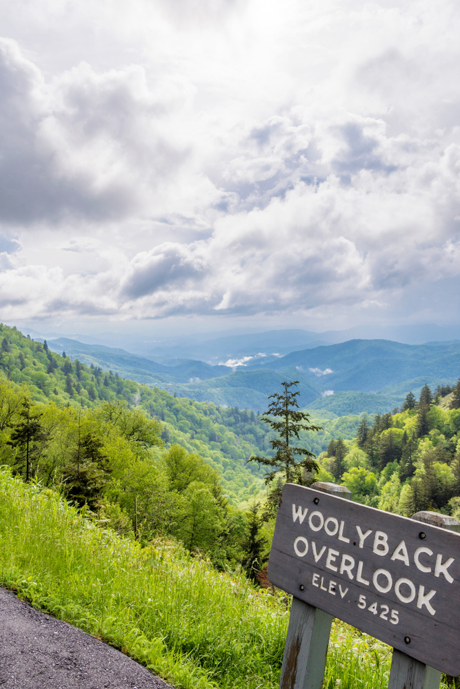 """A photo of a sign on a cloudy day saying """"Woolyback Overlook Elevation 5,425"""" with rolling mountains and forests behind it."""