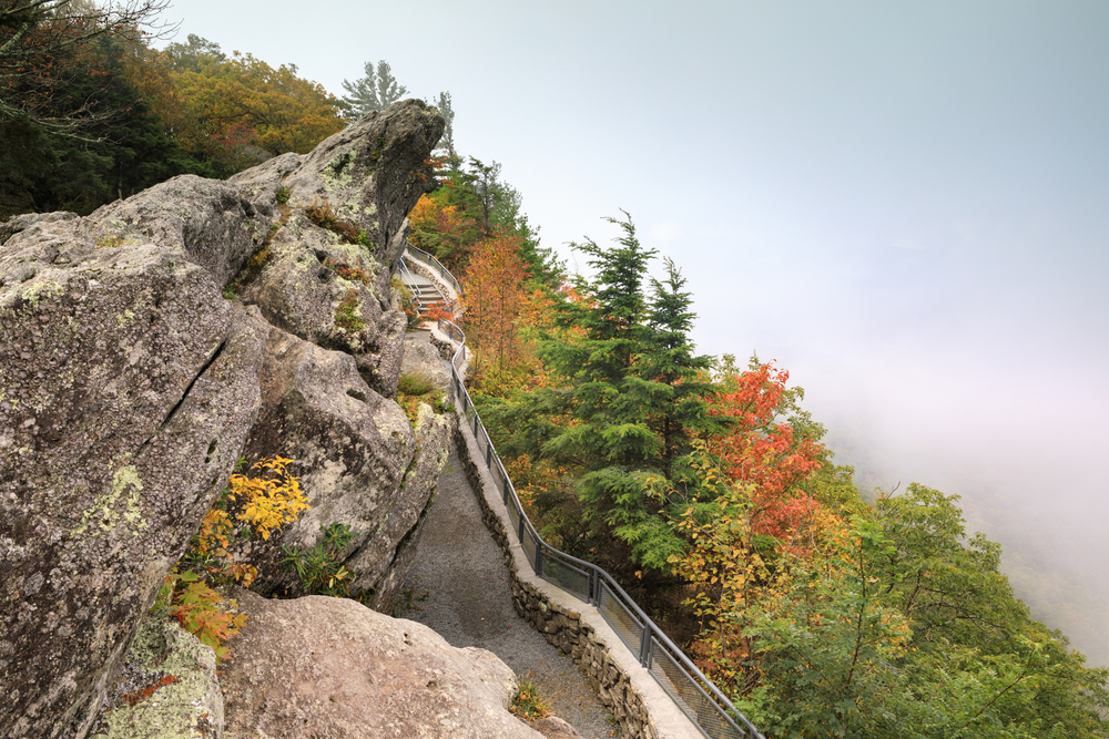 The Blowing Rock covered in moss. The trees around it are turning orange and yellow, but some still have green leaves on them. It is very foggy and you can't see any of the nearby mountains.