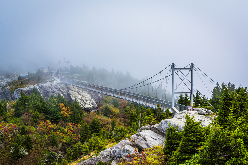 The swinging bridge that crosses over Grandfather Mountain. It is built on two large cliffs and there are trees all around it. It is very foggy and you can't see much more of the mountain top.