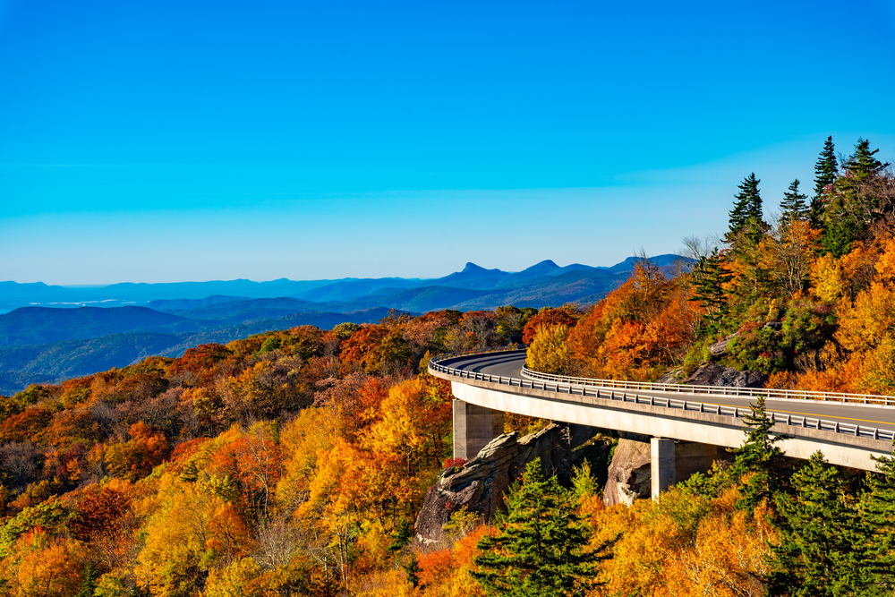The Linn Cove Viaduct in the middle of the fall. The trees around it are covered in yellow, orange, and red leaves. The mountains in the distance are silhouetted which gives them a blue color. The sky is very blue and clear. It is an iconic stop on the Blue Ridge Parkway drive.