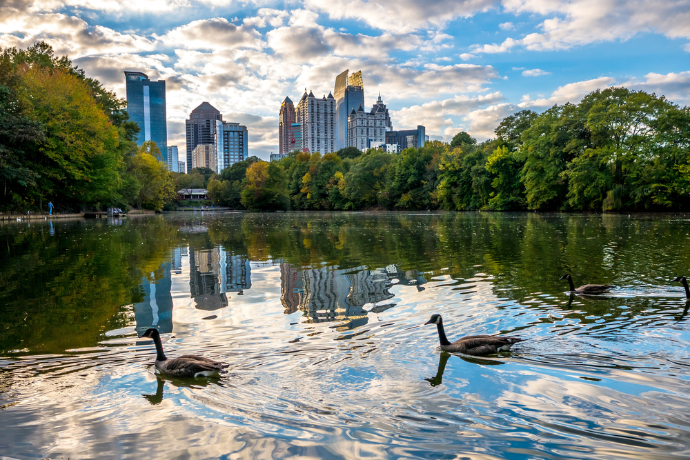 The lake a piedmont Park with ducks and buildings in background is perfect for a weekend in Atlanta