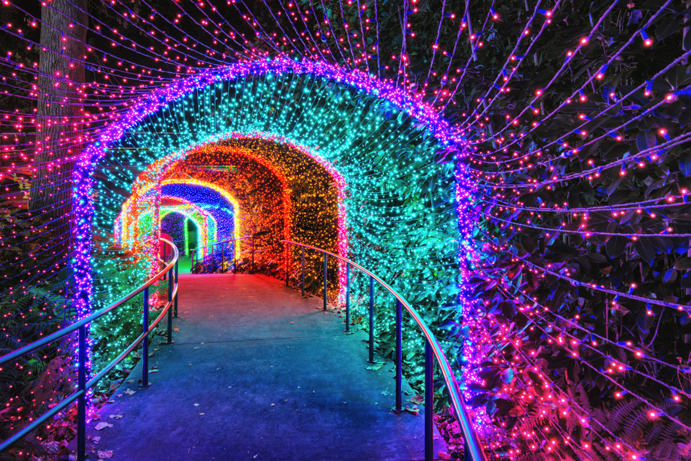 A photo of a tunnel of rainbow lights at the Atlanta Botanical Gardens at Christmas.