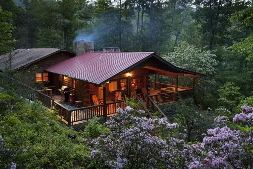 Photo of a log cabin nestled in between trees and wildflowers at Casa Suenos, one of the best Blue Ridge Mountains cabins
