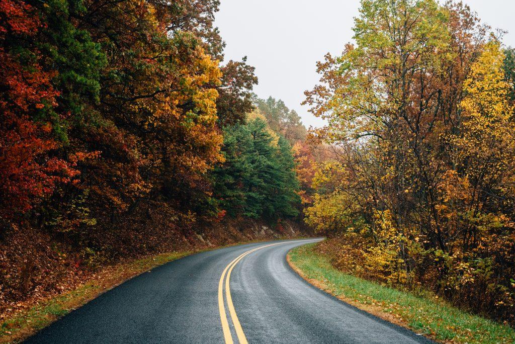Scenic fall foliage road along the Blue Ridge Parkway.