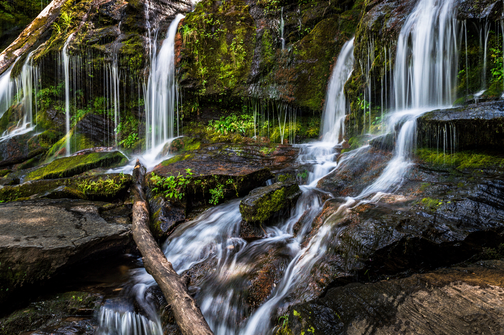 Catawba Falls is one of the closest waterfalls to Asheville.
