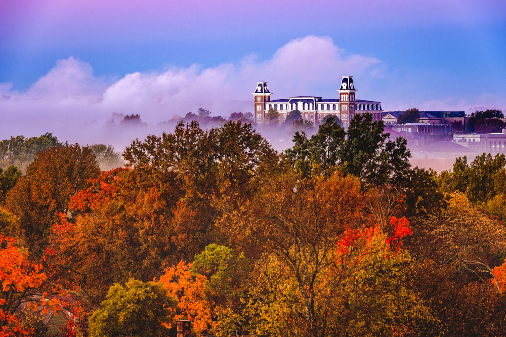 A photo of tall fall colored trees with white fog that is blanketing the area in front of a historic building in Fayetteville, Arkansas.