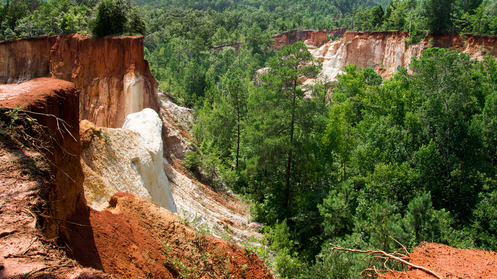 green trees and red clay in Providence Canyon from the overlook site.