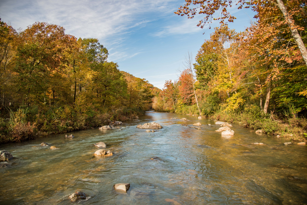 A picture of a river running through the Ouachita National Forest with autumn colored trees on either end of the river.