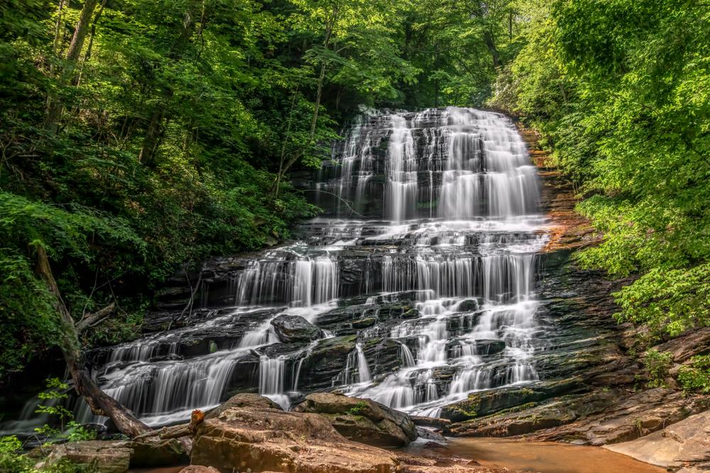 Pearson's Falls is one of the prettiest waterfalls near Asheville.