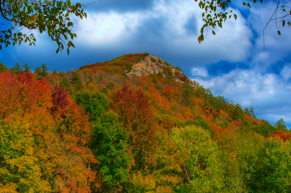 A picture of Pinnacle Mountain covered in trees that have the colors of fall dusted on their leaves