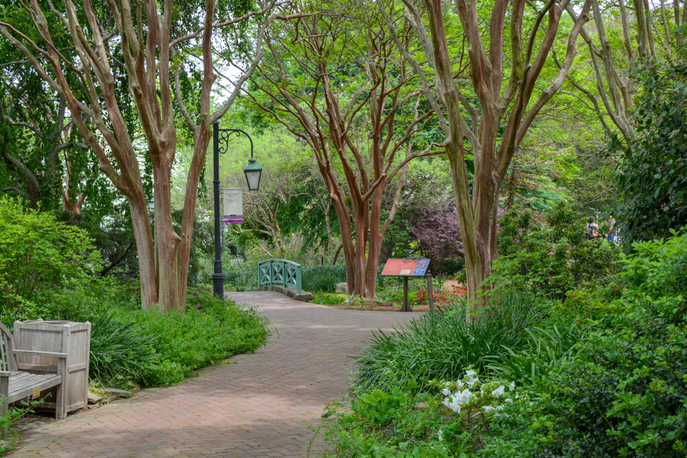 Photo of a pathway surrounding by trees and flowers at the Lewis Ginter Botanical Garden