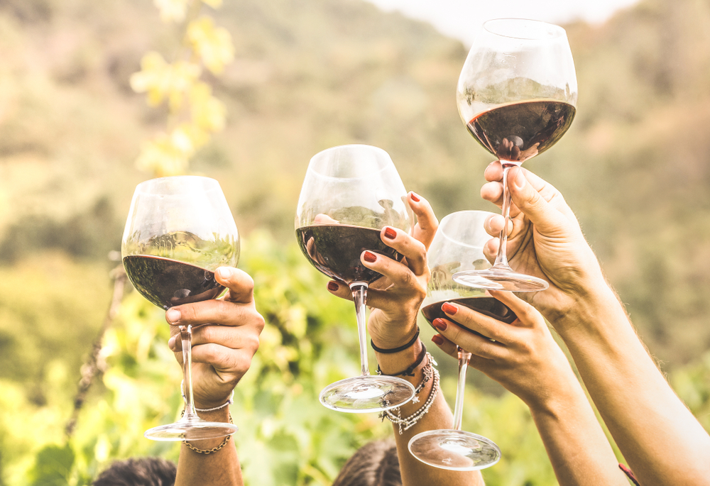 A wine tasting with friends is a great activity to do in Virginia.