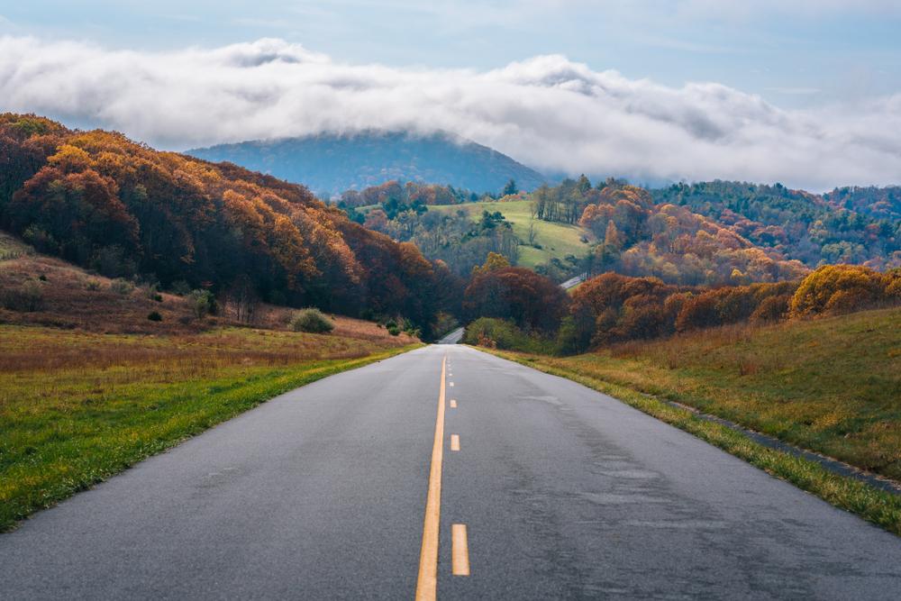 fall foliage on a virginia road