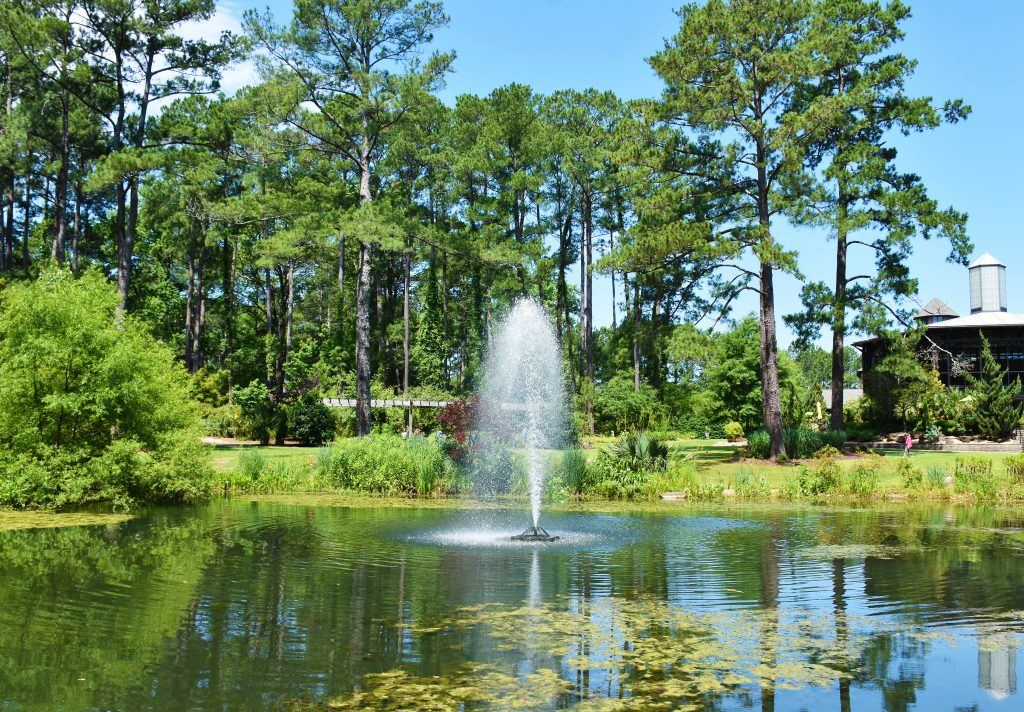 A fountain shoots water in a pond at the Cape Fear Botanical Garden