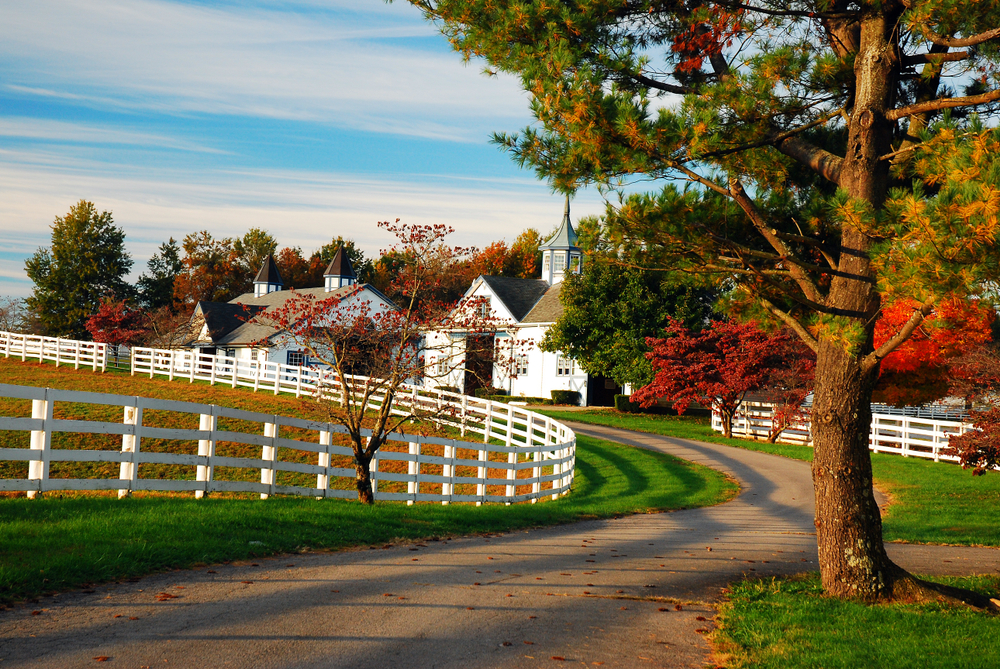 horse farm in horse country in kentucky, white fences and white barns surrounded by trees