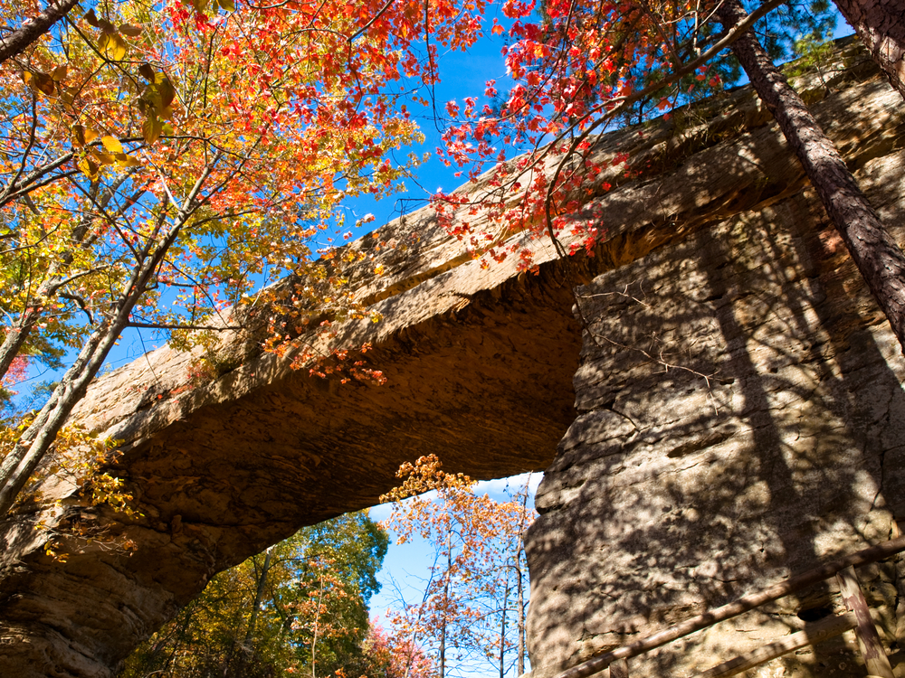 view from underneath the naturally formed sandstone arched bridge. Fall colors surround the bridge