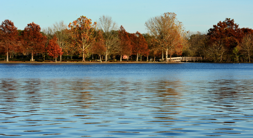 A beautiful view across a lake with fall colours