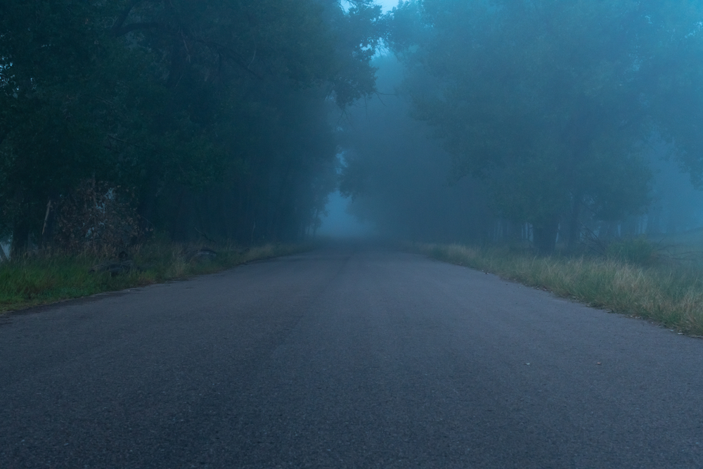 Elbow road has many terrifying stories that make it one of the most haunted places in virginia